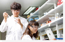 Biological Sciences and Biotechnology